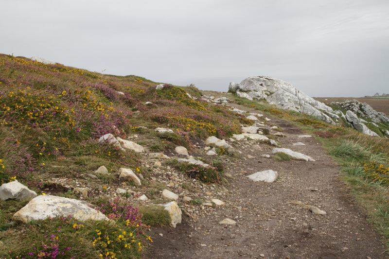 Les chemins de la pointe de Pen-Hir, sur la presqu'île de Crozon, le 28 août 2014